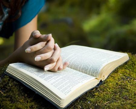Resultado de imagen para biblias personas leyendo